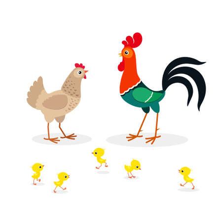 Vector illustration of brown chicken family isolated on white background