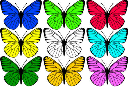 feelers: Butterfly ornamento  Vectores