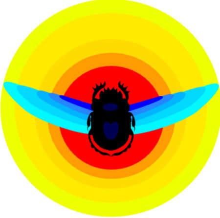 hanedan: Scarab beetle