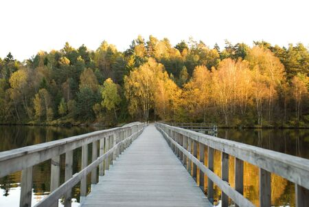 wooden bridge over a lake which leads to an autumn fall forest photo