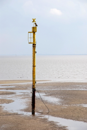 silty: black yellow see mark in watt in the north sea