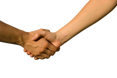 parship: a handshake between two young hands, on white