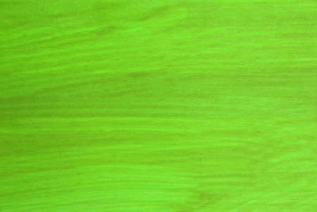 a light green texture with wooden structure Stock Photo