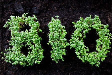 healthfulness: the word BIO written with fresh grown cress