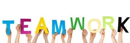 muchas manos sostienen la palabra trabajo en equipo, aislados