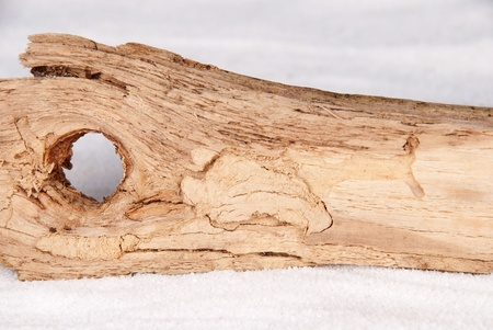 a pice of driftwood with copy space as background photo