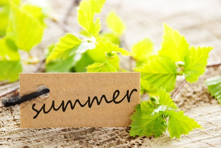 attachement: a natural looking label with summer written on it and with green leaves and wood as background Stock Photo