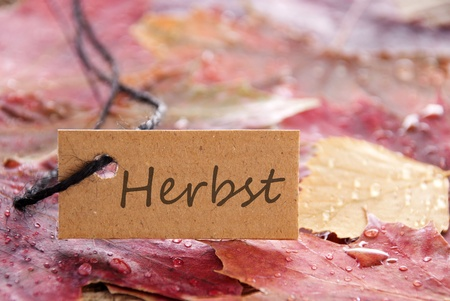 herbst: a label tag with the german word Herbst, which means autumn or fall, on it