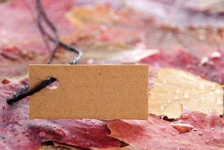 attachement: a brown banner with autumn leaves as background Stock Photo