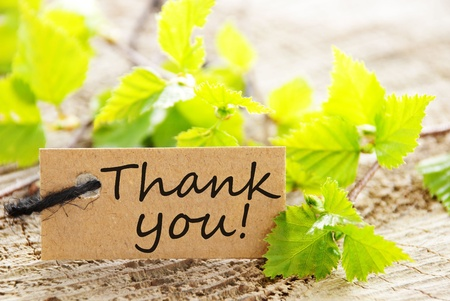 thankful: a natural looking label with thank you and green leaves and wood as background