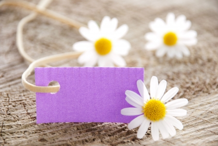 attachement: a purple label with white blossoms, copy space and background