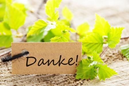 agradecimiento: una etiqueta de aspecto natural con la palabra alemana Danke, lo que significa gracias y hojas verdes y la madera como fondo Foto de archivo
