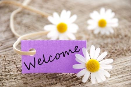 een paarse banner met welkom op en bloemen op de achtergrond Stockfoto