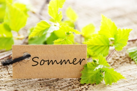 attachement: a natural looking label with green leaves and the german word Sommer which means summer and wood as background