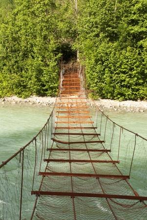 木の緑の壁に川につながるさびた橋
