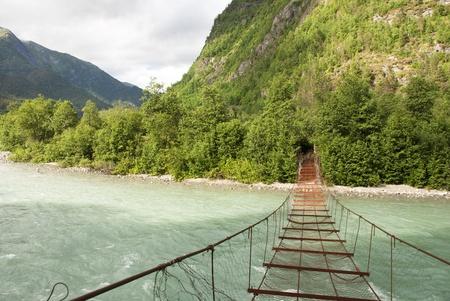 さびた橋つながる森の中に、巨大な丘の川