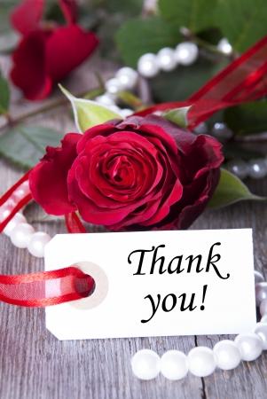 Fondo con Rose y las perlas y las palabras le agradece