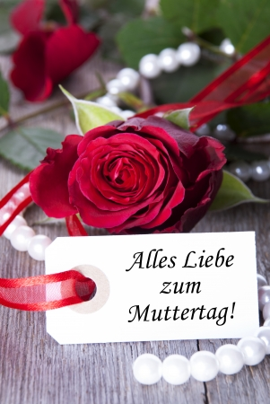 in liebe: Mothers Day Background with the German Words Alles Liebe zum Muttertag which means Happy Mothers Day