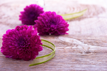 Background with Purple Blossoms and Green Ribbon on Wood with Copy Space photo