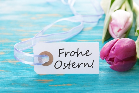 Ostern: Banner with the german words Frohe Ostern which means Happy Easter with tulips on turquiose background Stock Photo