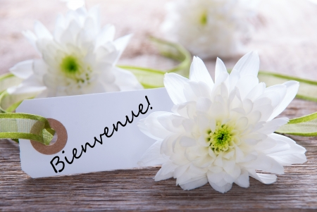 White label with white flowers and the french word bienvenue stock stock photo white label with white flowers and the french word bienvenue which means welcome mightylinksfo