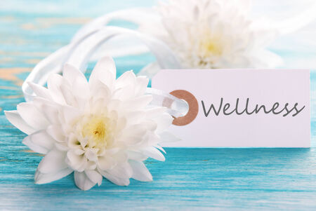 healthfulness: Label with Wellness on Turquoise Wooden Background with white Blossoms