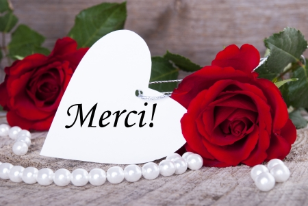 merci: Background with Roses and Pearls and the French Word Merci which means Thanks