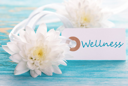 healthfulness: Label with the blue Word Wellness on turquiose Background with white Flowers
