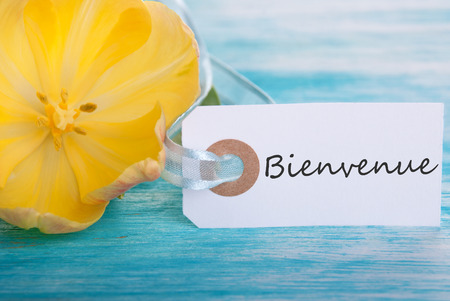 Tag with the French Word Bienvenue which means Welcome photo