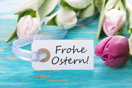 frohe: Tag with the german words Frohe Ostern which means Happy Easter and tulip on turquoise background Stock Photo