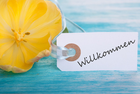 willkommen: Label with the German Word Willkommen which means Welcome Stock Photo