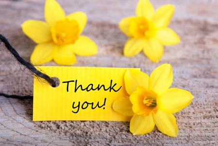 Etichetta con Thank You e giallo Narcisses