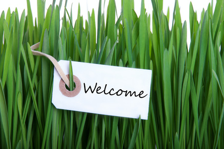 A Label in the Green Gras with the Word Welcome on it photo