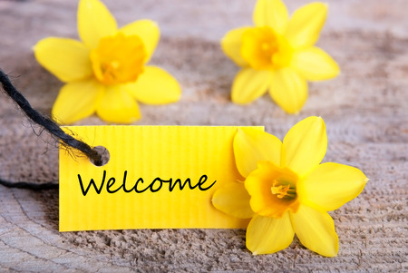 Yellow Label with Welcome and Yellow Daffodils in the Background photo