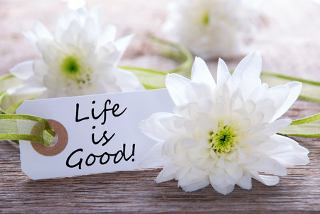 Label with the Text Life is Good an Wood with White Blossoms photo