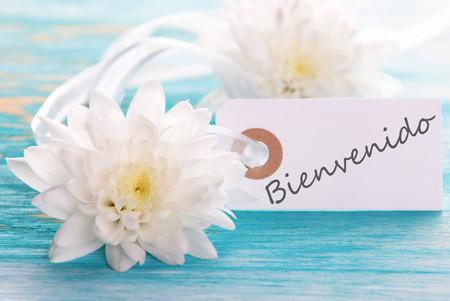 bienvenido: Banner with the Spanish Word Bienvenido which means Welcome