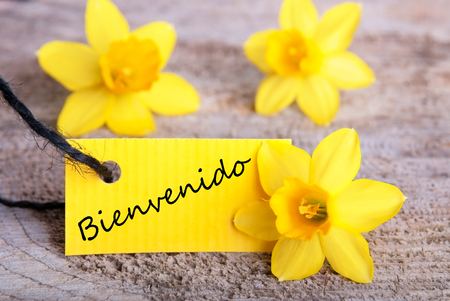 bienvenido: Yellow Tag with the Spanish Word Bienvenido which means Welcome  Stock Photo
