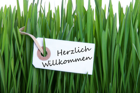 willkommen: A Label in the Gras with the German Words Herzlich Willkommen, which means Welcome Stock Photo