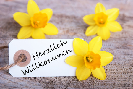 willkommen: Label with the German Words Herzlich Willkommen which means Welcome and Narcissus Blossoms Stock Photo
