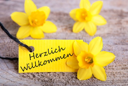willkommen: Herzlich Willkommen on a yellow easter or spring background Stock Photo