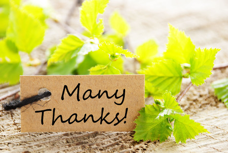 A Label with Many Thanks and Fresh Green Leaves in the Background photo