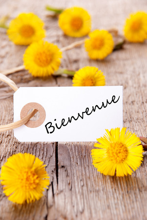 Yellow Flowers with the French Word Bienvenue which means Welcome photo