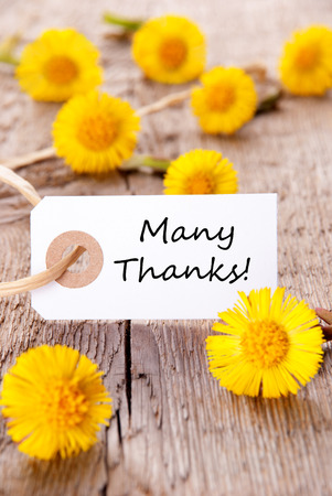 many thanks: Label with Many Thanks and Yellow Flowers Stock Photo