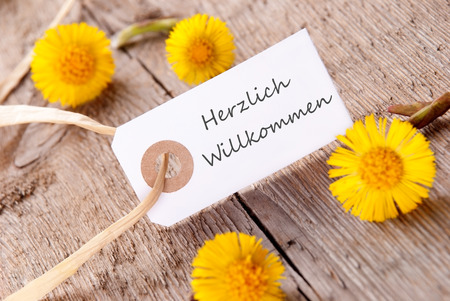 willkommen: White Banner with the German Words Herzlich Willkommen which means Welcome with yellow Flowers