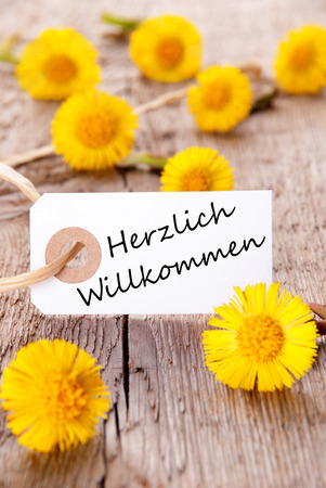 willkommen: Yellow Flowers with the German Words Herzlich Willkommen which means Welcome