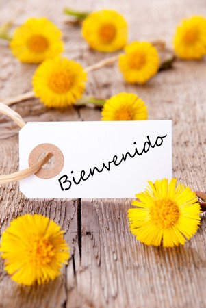 bienvenido: Yellow Flowers with the Spanish Word Bienvenido which means Welcome