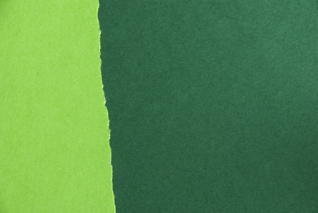 seaonal: A Light and Dark Green Paper Texture, Spring or Summer Background