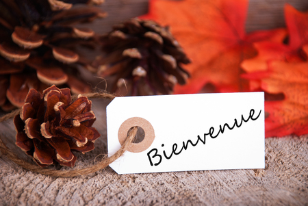welcom: The French Word Bienvenue, which means Welcome, written on a label as Fall Background
