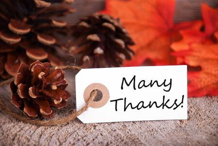 caes: Muchas Gracias en una etiqueta y de las hojas de colores y pi�as