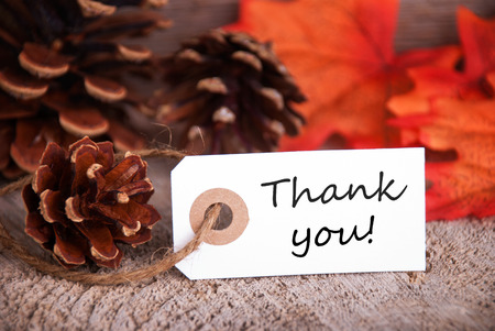 Thank You Label with Fall Background photo